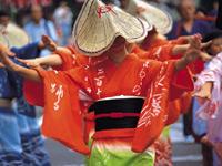 富山市の祭りおわら風の盆